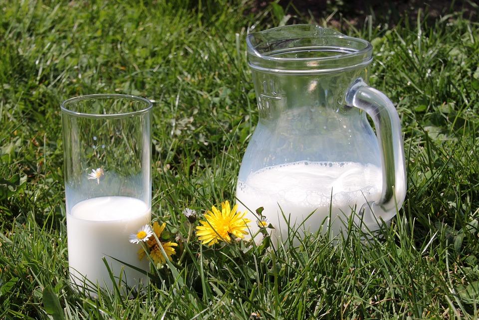 Quelques conseils pour augmenter la production d'un élevage laitier