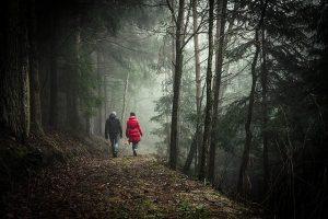 marche à pied en forêt