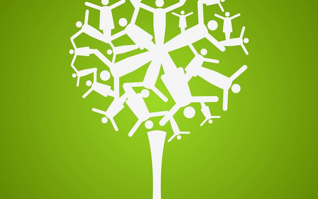 Comment construire un arbre généalogique ?